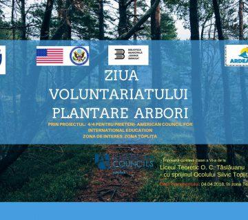 ziua voluntariatului
